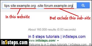 Search a single website google