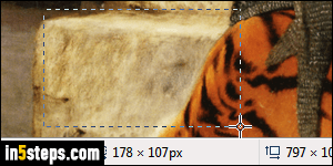 Crop a picture in MS Paint (only keep the selected area)